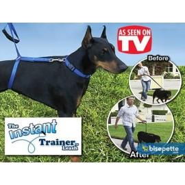 Instant Trainer Leash Köpek Eğitim Tasması